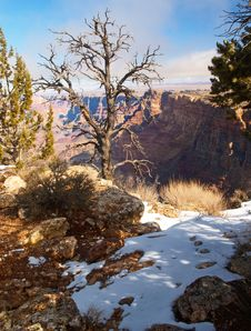 Free Grand Canyon National Park Stock Photo - 2028830