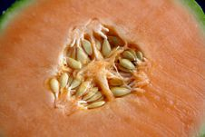 Free Galia (melon) Royalty Free Stock Image - 2029186