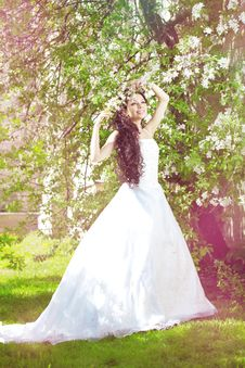 Free Beautiful Bride In A Blossoming Garden Stock Photo - 20202220