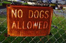 Free No Dogs Allowed Royalty Free Stock Image - 20203346