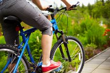 Free Side View Of A Cycle With Front Wheel Stock Image - 20203431