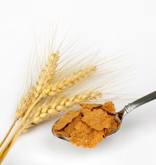 Wheat Cereal Flakes Stock Photography