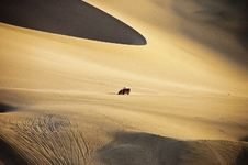Free Dune Buggy And Dunes Royalty Free Stock Photography - 20207457