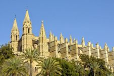 Free Side View Of Palma Cathedral Royalty Free Stock Image - 20209176
