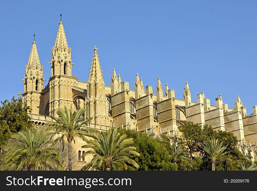 Side view of Palma Cathedral