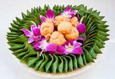 Free Cookie On Orchid Flower Stock Images - 20210704