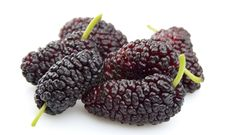 Free Sweet Mulberry Stock Photography - 20214672