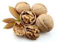 Free Dried Walnut Royalty Free Stock Image - 20215026