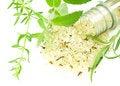 Free Herbal Sea Salt Stock Photo - 20224280
