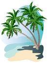 Free The Tropics Stock Photos - 20227763