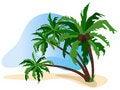 Free The Tropics Royalty Free Stock Photography - 20227767