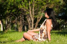 Free Beautiful Brunette Sitting On The Grass Royalty Free Stock Image - 20226196