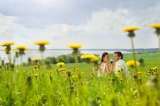 Free Bride And Groom In The Field Of Dandelion Stock Photo - 20227640