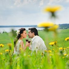 Free Wedding Couple Kissing On A Grass Stock Images - 20227654