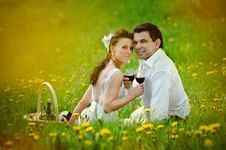 Free Bride And Groom In The Field Of Dandelion Royalty Free Stock Photo - 20227675