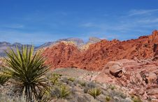 Free Calico Hills Close-Up Stock Photography - 20229692