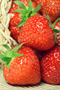 Free Fresh Strawberries In A Basket Stock Photography - 20230942