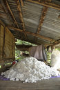 Free Cotton Material Group Pile Process Stock Photo - 20232210