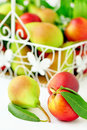 Free Pears And Peaches Stock Images - 20237894
