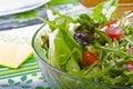Free Rucola Salad Royalty Free Stock Photos - 20238408