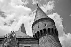 Free Monochrome Image Of An Old Castle Defense Tower Royalty Free Stock Image - 20230226