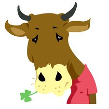 Free Ox Royalty Free Stock Photos - 20230628