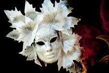 Free Venetian Mask - Fall Theme Stock Photography - 20232152
