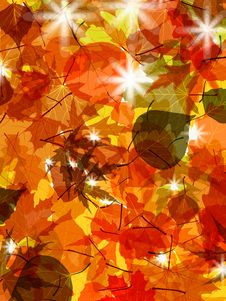Free Sun Pushing Through A Varicoloured Leaves. EPS 8 Stock Photo - 20233230