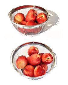 Free Nectarine 0014 Royalty Free Stock Image - 20234506
