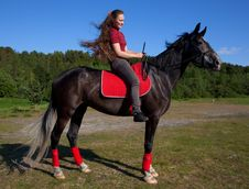 Beautiful Girl With Brown Hair On A Black Horse Royalty Free Stock Photos