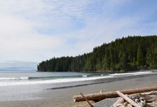 Free Vancouver Island China Beach Landscape Royalty Free Stock Photo - 20235445