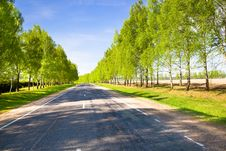 Free Rural Roads Stock Photography - 20239432