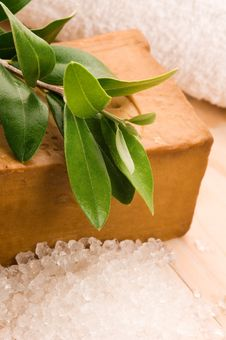 Natural Olive Soap With Fresh Branch Royalty Free Stock Photography