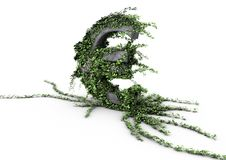 Euro Symbol Overgrown With Ivy Royalty Free Stock Photo