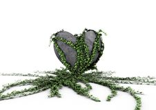 Heart Overgrown With Ivy Stock Photography