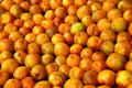 Free Pickled Plums Stock Photo - 20242190