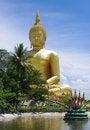 Free Big Buddha Royalty Free Stock Image - 20242706