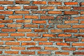 Free Texture Of Brick Wall Stock Photo - 20242780