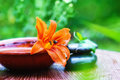 Free Spa Still Life With Lily Royalty Free Stock Photography - 20247407