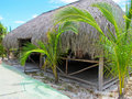 Free Playa Blanca (Resort), Cayo Largo, Cuba Royalty Free Stock Photography - 20247547
