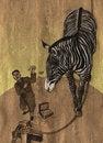 Free Zebra In Circus Stock Photography - 20247932