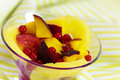 Free Delicious Fresh Fruit Salad Served In Bowl As Dess Royalty Free Stock Photo - 20249105