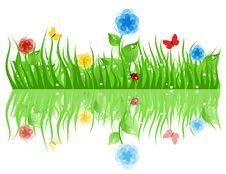 Free Grass2 Stock Photos - 20241093