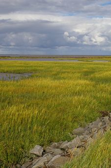 Free World Heritage Tidal Flats North Sea Stock Photo - 20241230