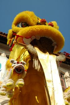 Free Chinese New Year Dragon Close Up Stock Photos - 20242103