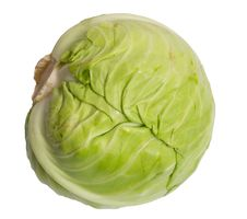 Free Cabbage Isolated On White Royalty Free Stock Images - 20242339