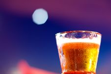 Free Beer Stock Images - 20242404