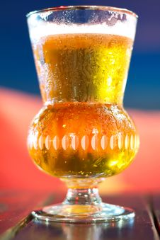 Free Beer Stock Image - 20242411