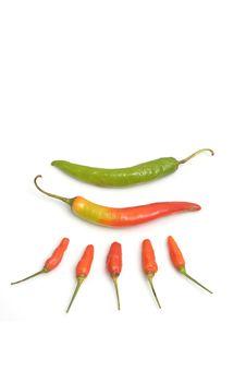 Free Hot Chili On Designed Royalty Free Stock Images - 20243329