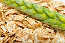 Free Wheat Flakes And Ear Of Wheat Royalty Free Stock Photos - 20243518